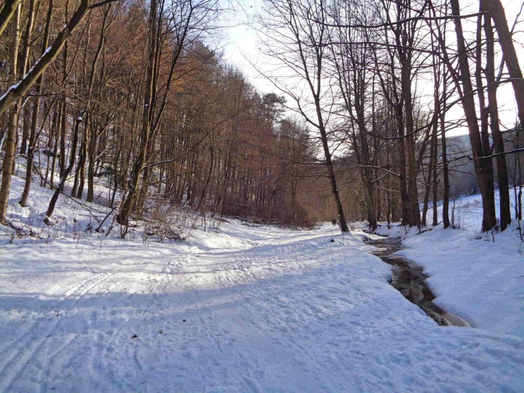 Dolina Sąspówki zimą
