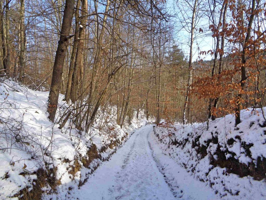 Ojcowski Park Narodowy, czerwony szlak w zimie