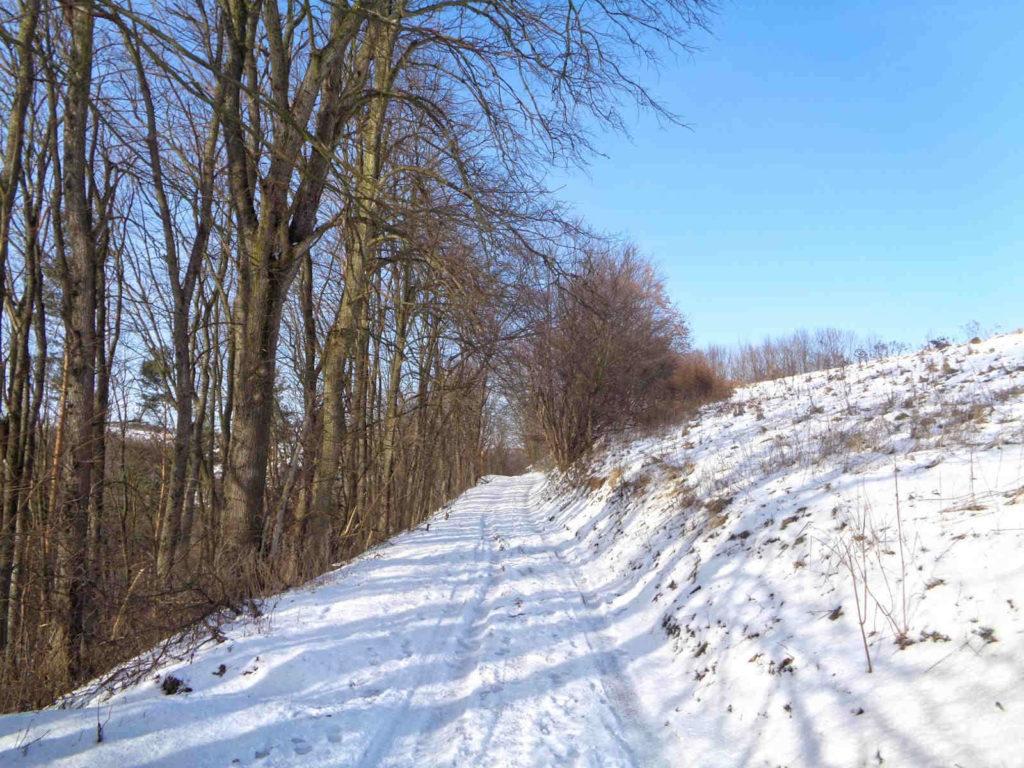 Ojcowski Park Narodowy, szlak do Pieskowej Skały