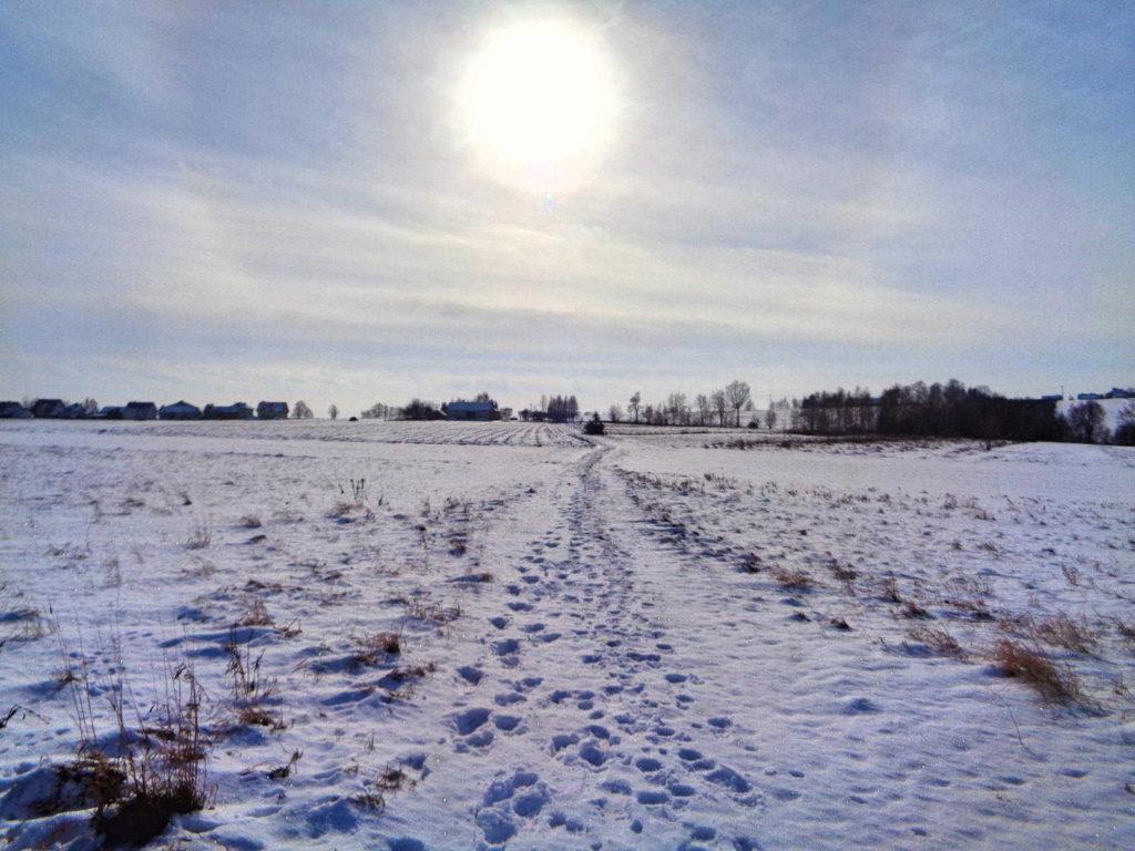 OPN, Szlak Dolinek Jurajskich zimą