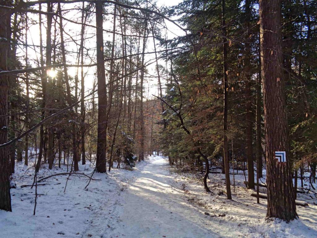 OPN zimą, szlaki
