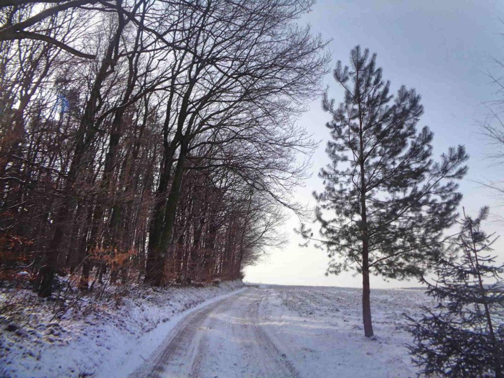 Czarny szlak Szklary - Radwanowice