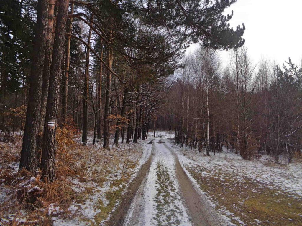 Szklary - Radwanowice, szlak