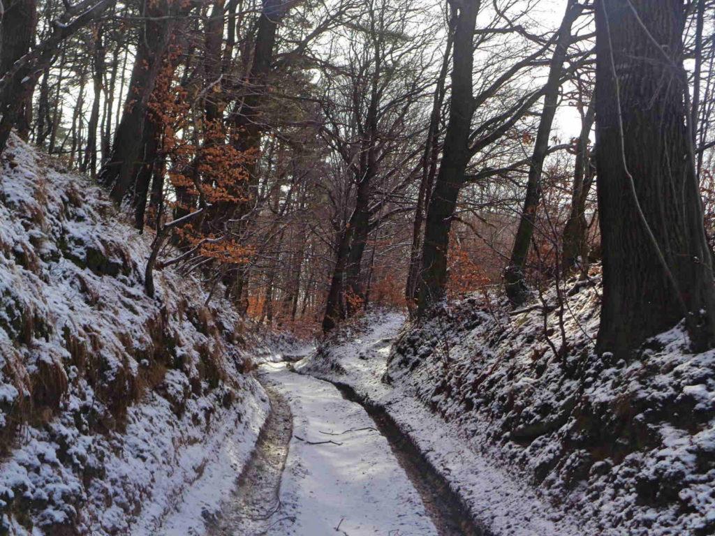 Szklary - Radwanowice, szlak czarny
