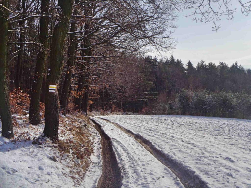 Szlak Szklary - Radwanowice