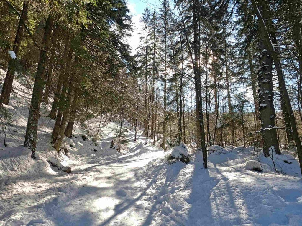 Dolina Małej Łąki, przejście w zimie