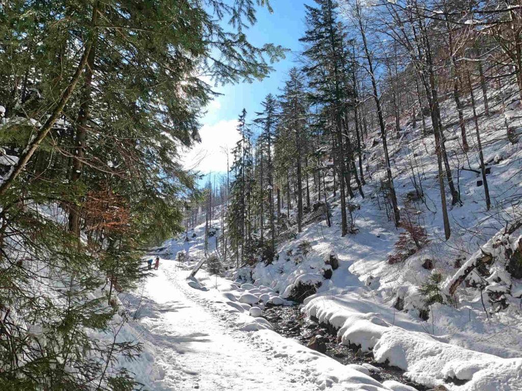 Dolina Małej Łąki, przejście zimą