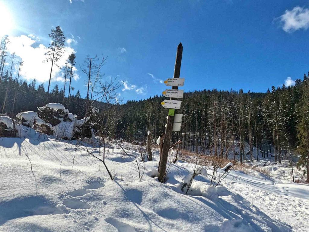 Dolina Małej Łąki, skrzyżowanie szlaków