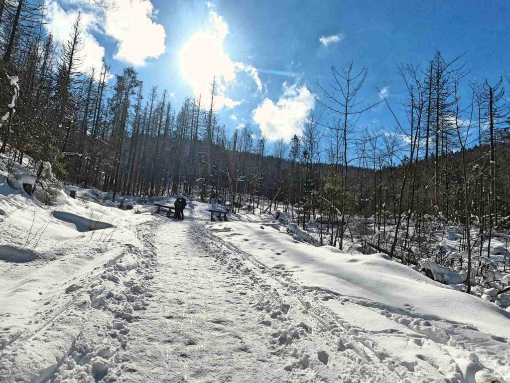 Szlak przez Dolinę Małej Łąki