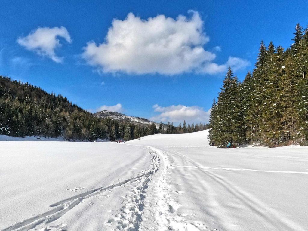 Wielka Polana Małołącka w zimie