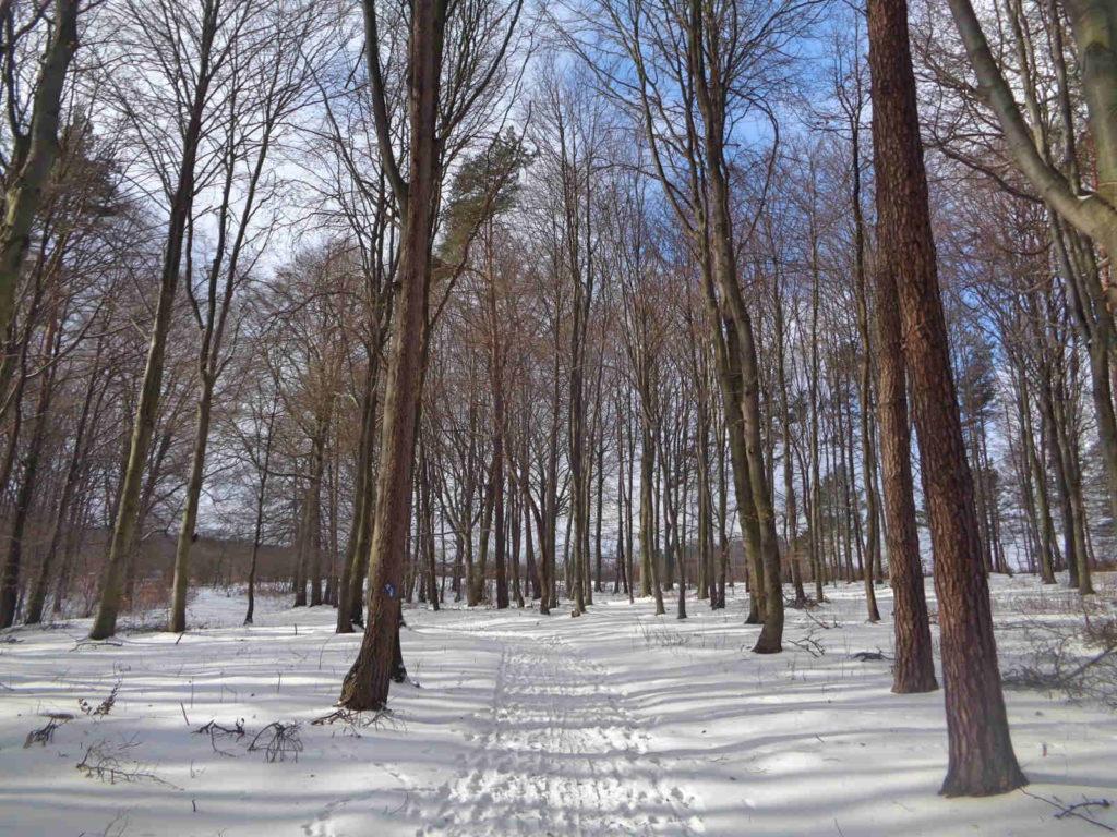 Dolina Racławki, szlak czerwony
