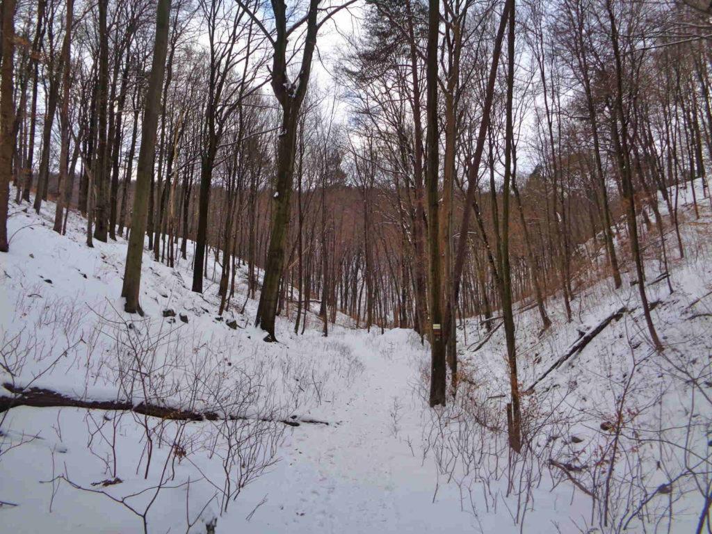 Dolina Racławki, szlak niebieski