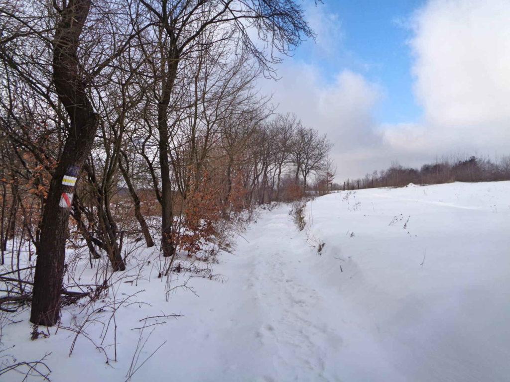 Dolina Racławki zimą