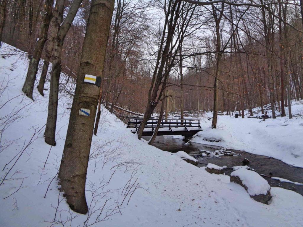Dolina Racławki, żółty szlak