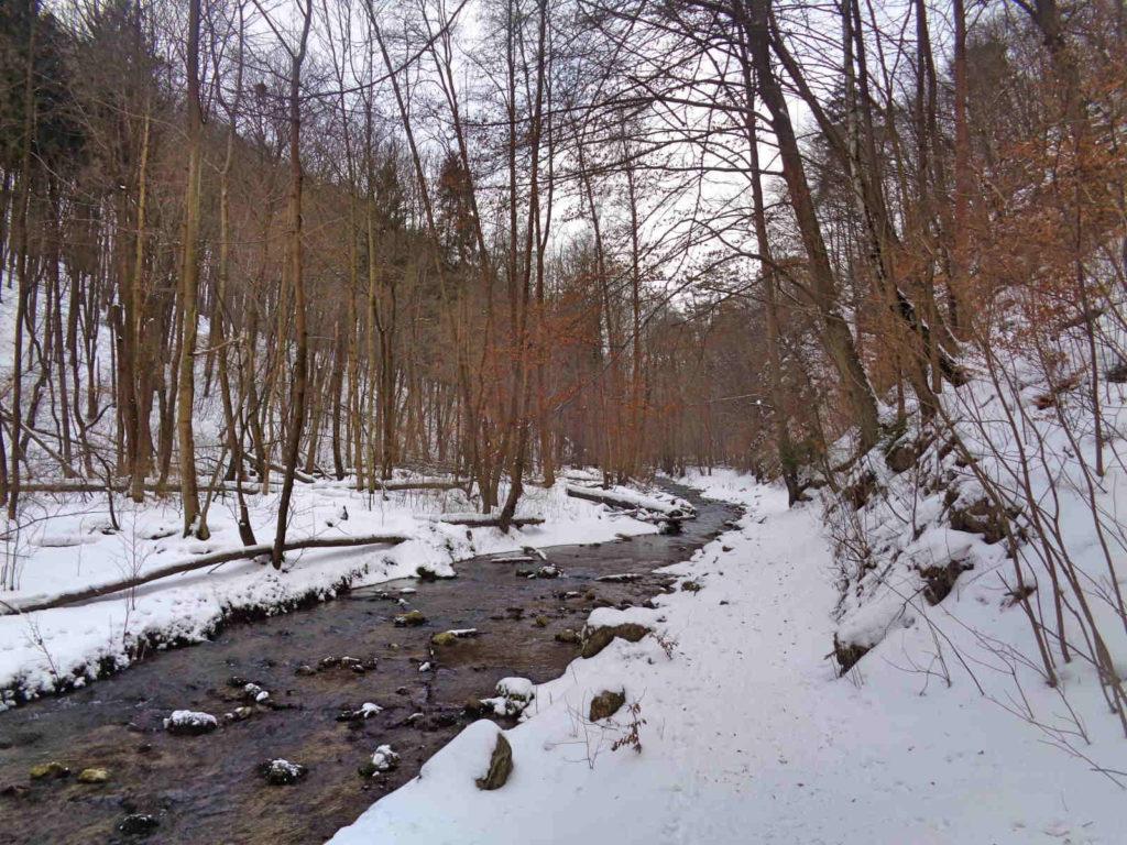 Rzeka Racławka