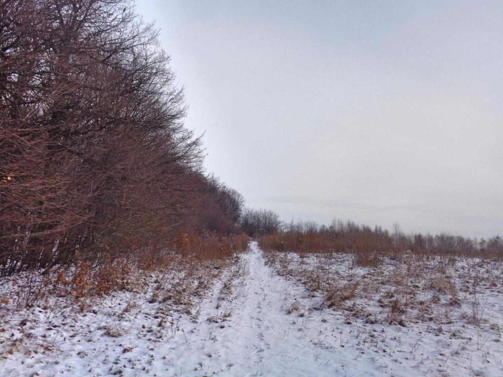Dolina Szklarki, szlak czerwony