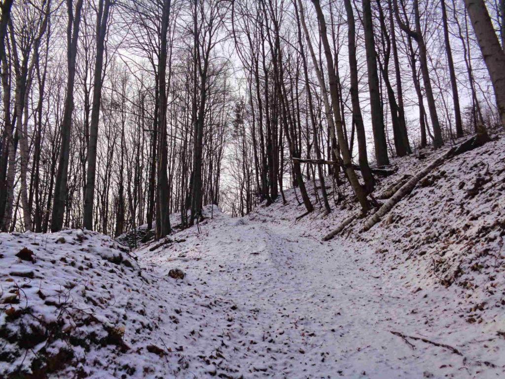 Dolina Szklarki w zimie