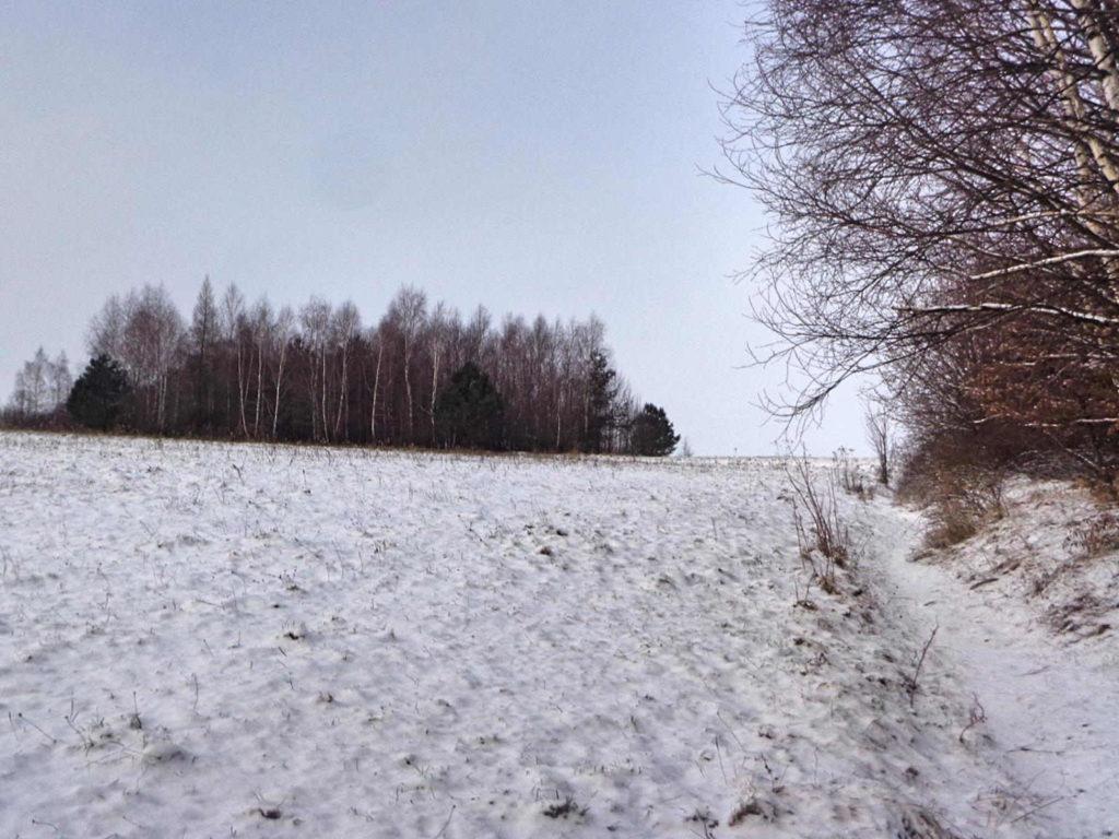 Szlak Dolina Szklarki