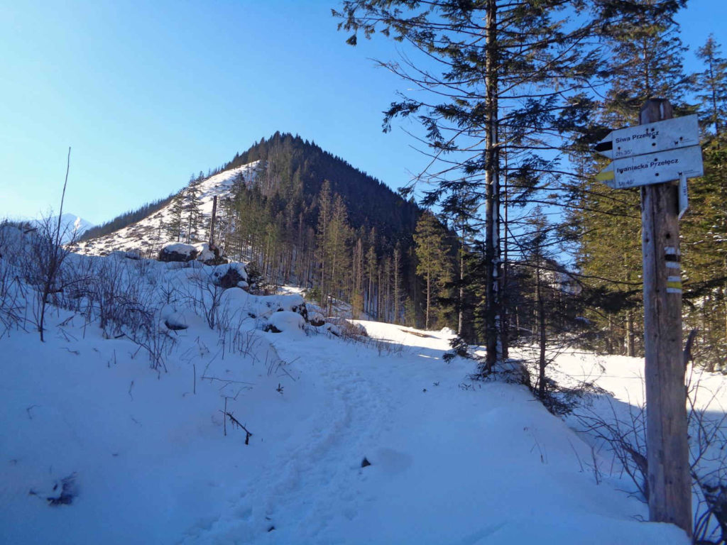 Dolina Chochołowska, szlaki