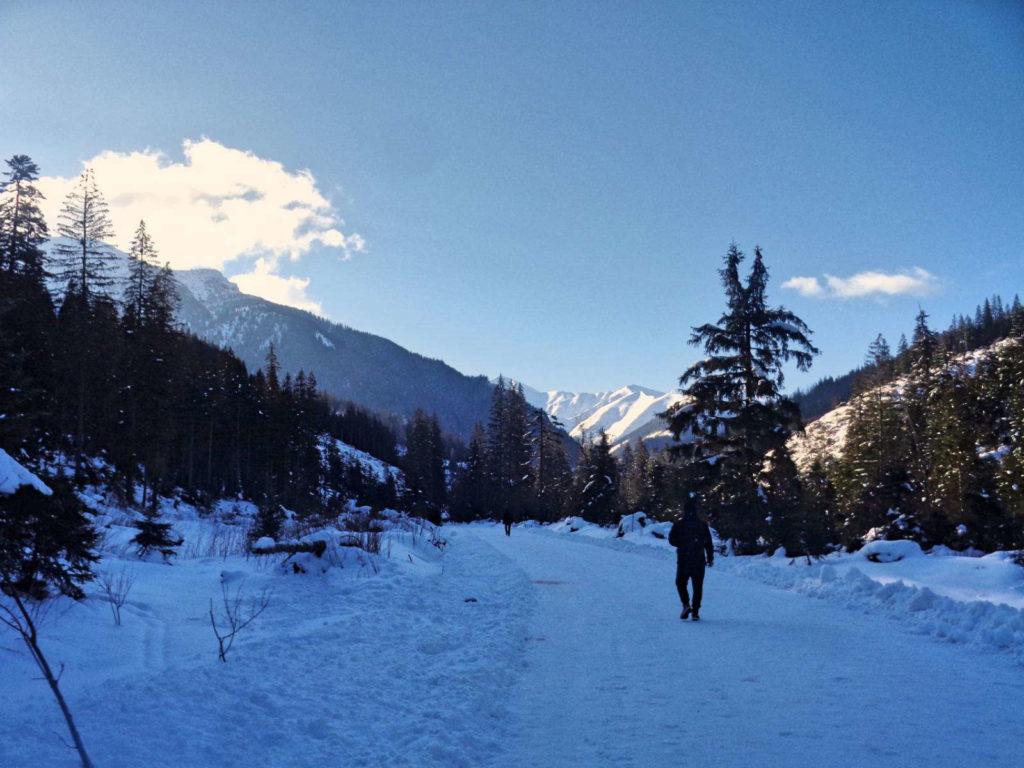 Dolina Chochołowska w zimie