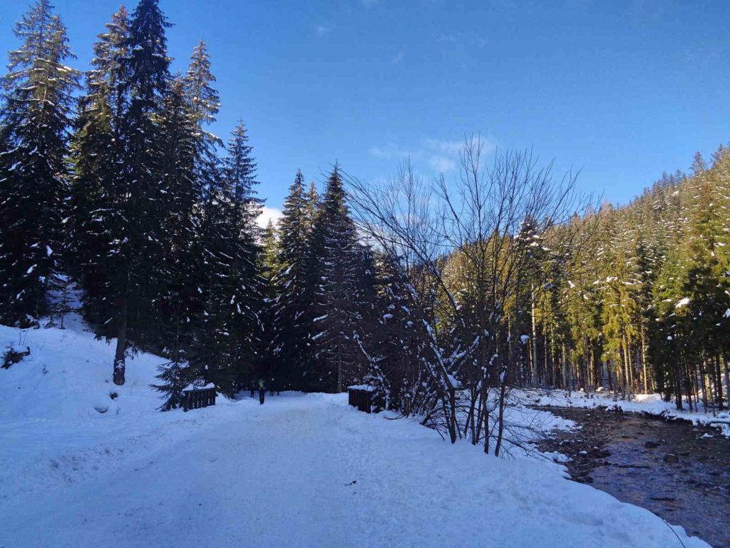 Dolina Chochołowska zimą