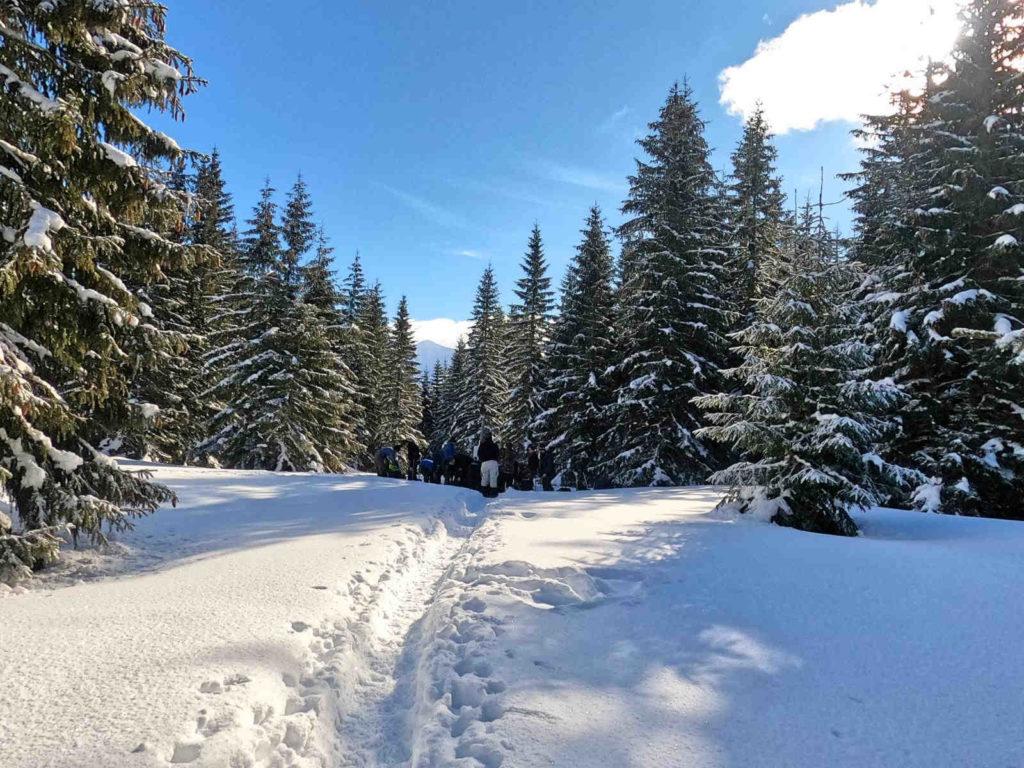 Iwaniacka Przełęcz w zimie