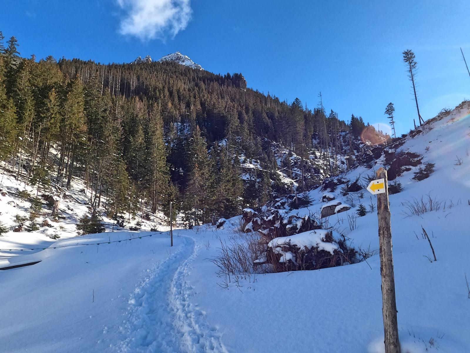 Iwaniacka Przełęcz zimą od Doliny Chochołowskiej
