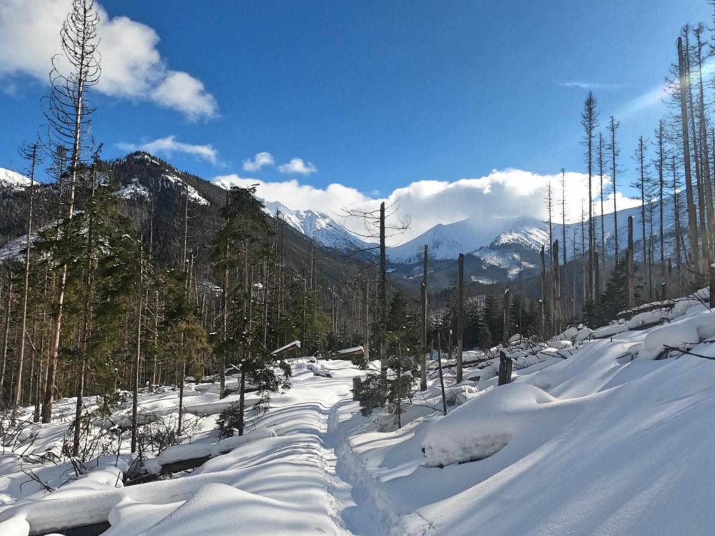 Iwaniacka Przełęcz zimą od Doliny Kościeliskiej
