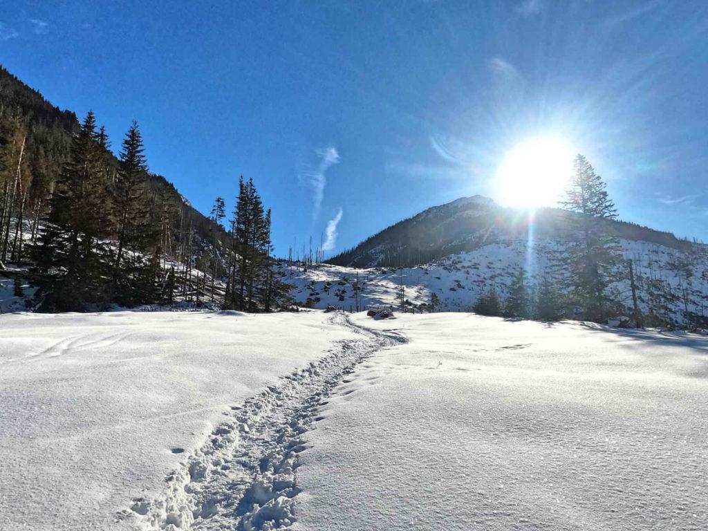 Iwaniacka Przełęcz zimą z Doliny Chochołowskiej