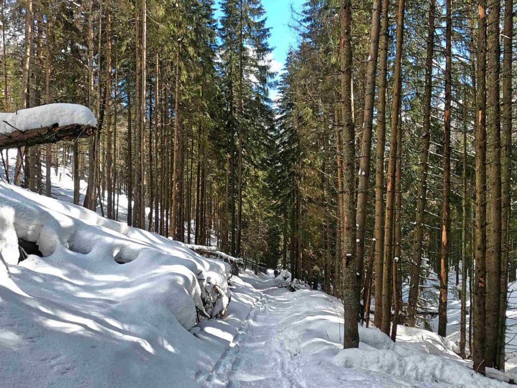 Iwaniacka Przełęcz zimą z Doliny Kościeliskiej