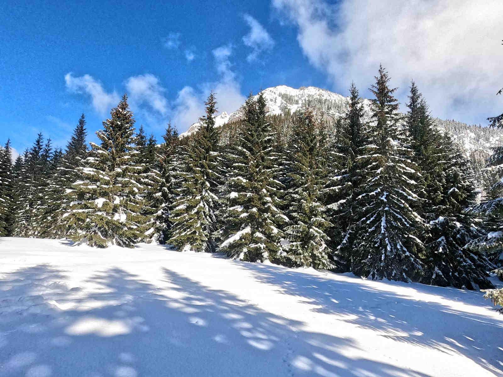 Iwaniacka Przełęcz zimą