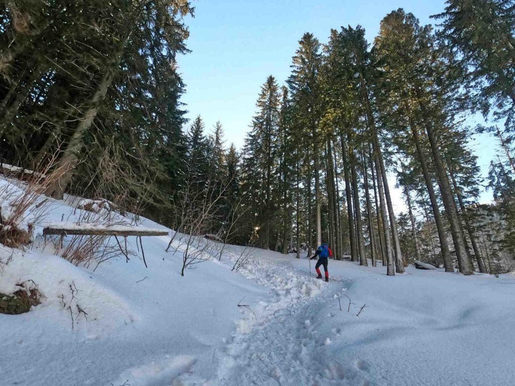Szlak na Iwaniacką Przełęcz zimą