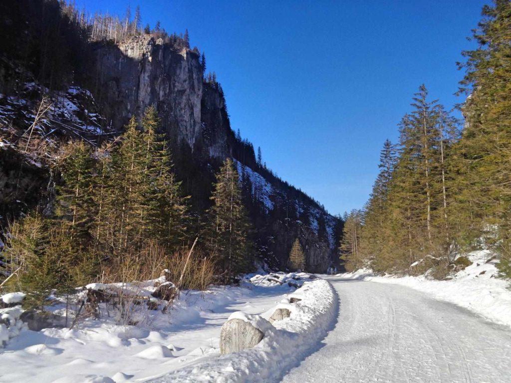Dolina Kościeliska w zimie