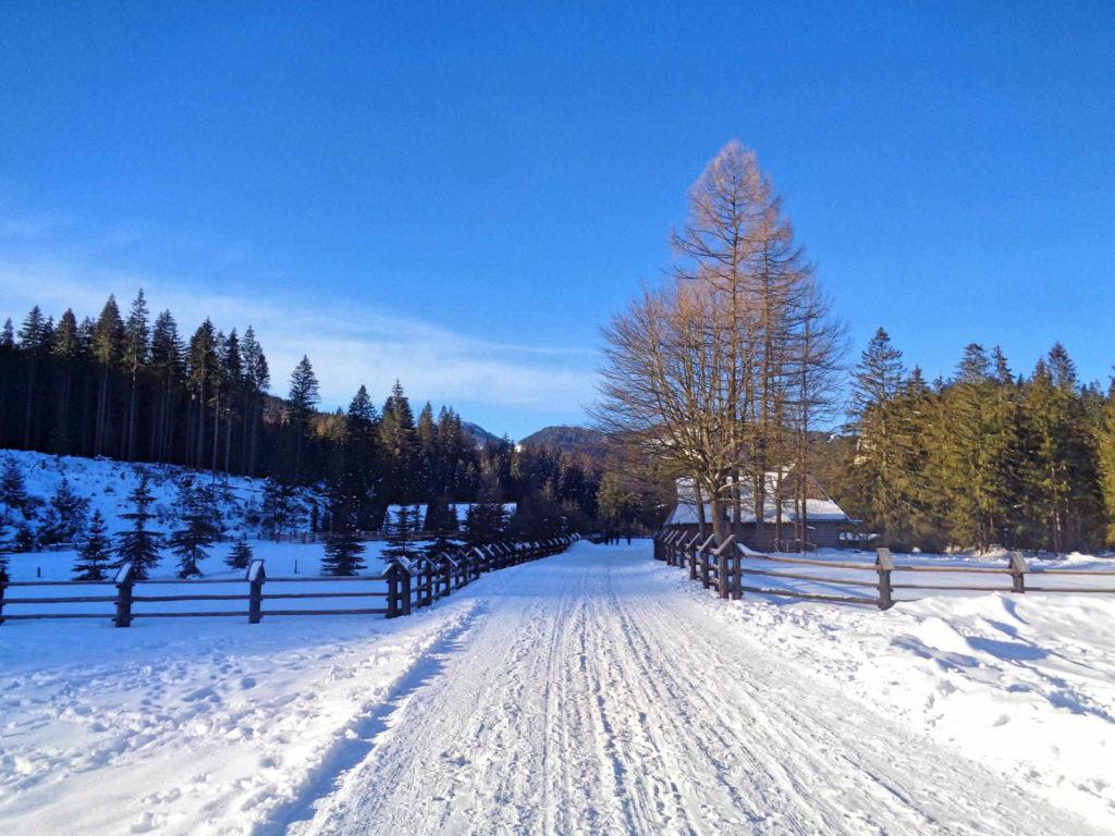Siwa Polana w zimie