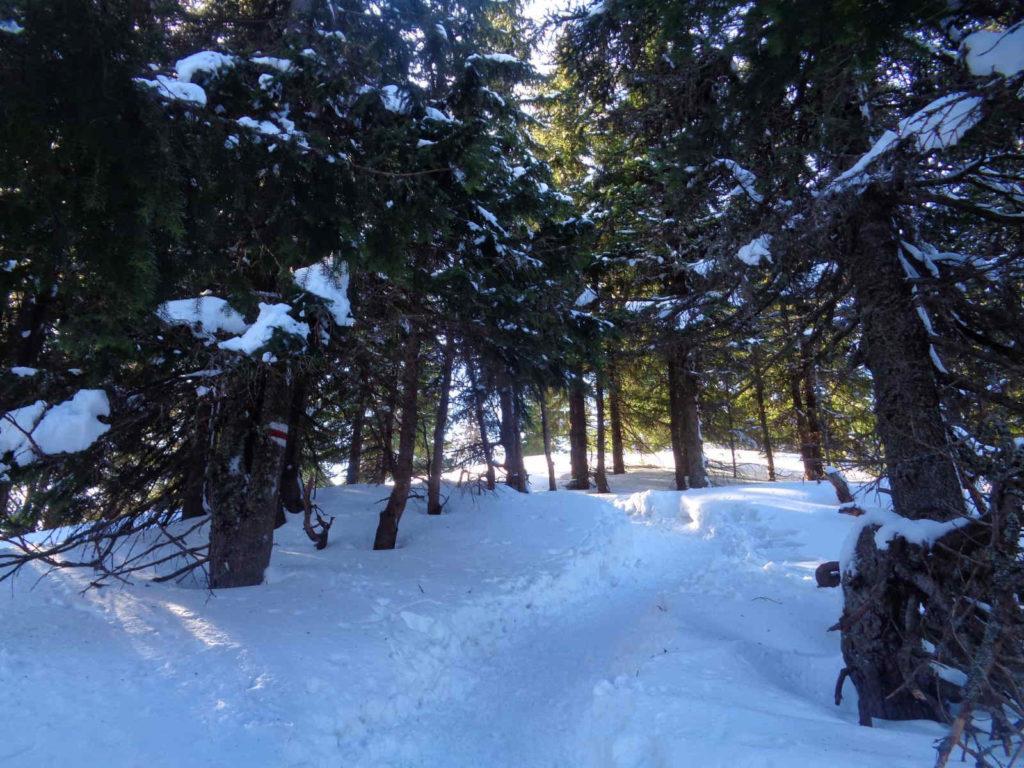 Szlak na Trzydniowiański Wierch zimą