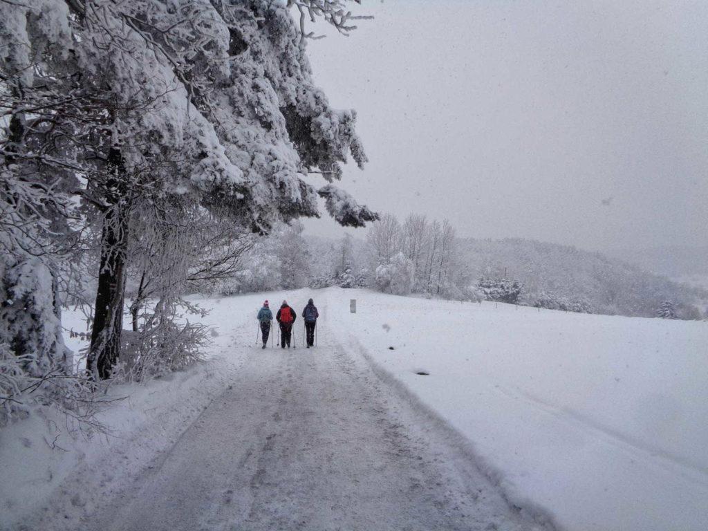 Szlak na Działek zimą