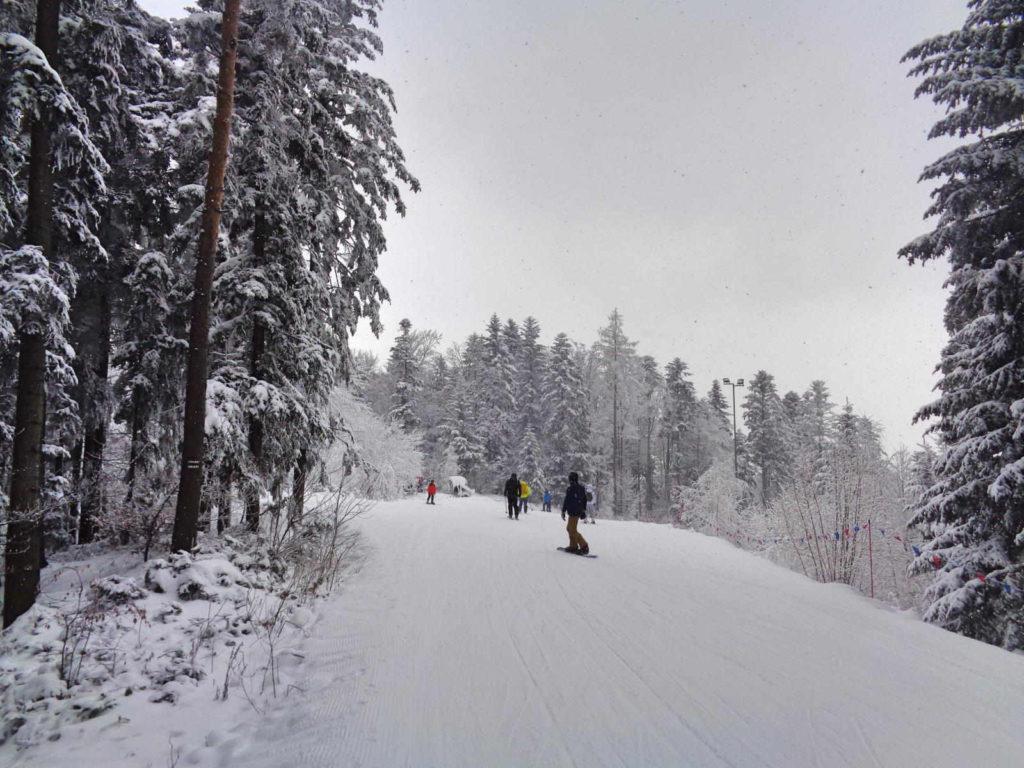 Góra Chełm, trasy narciarskie
