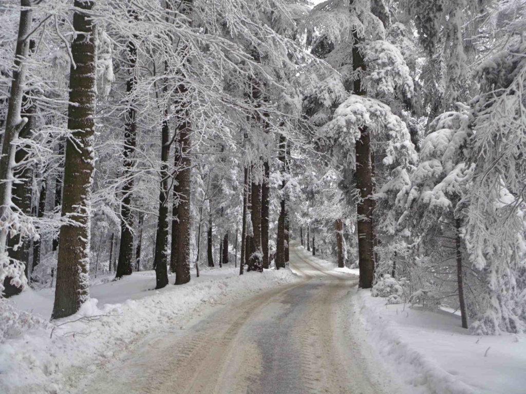Szlak przez Górę Chełm zimą