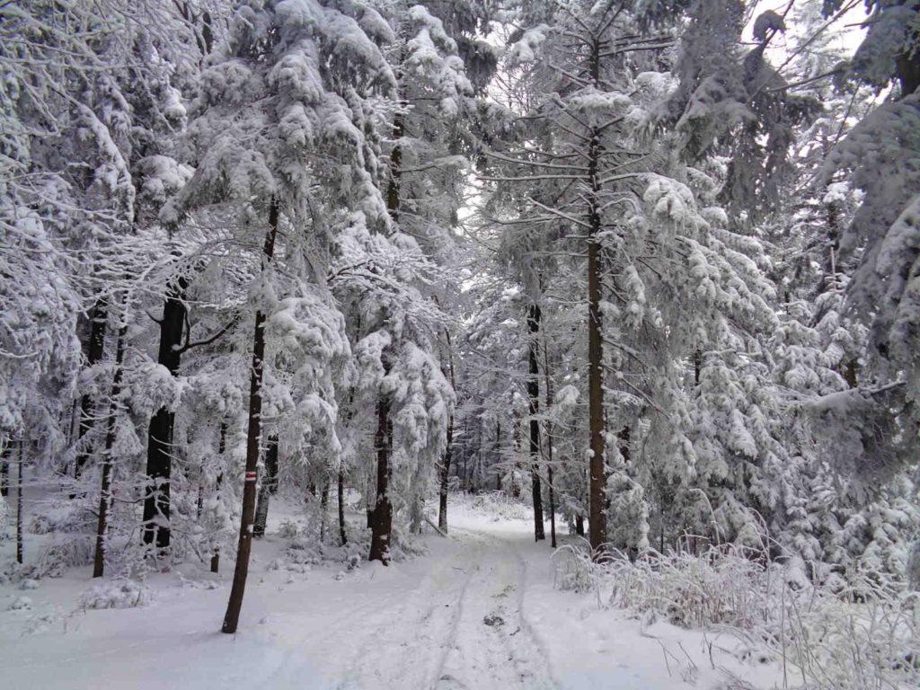 Szlak przez Śliwnik