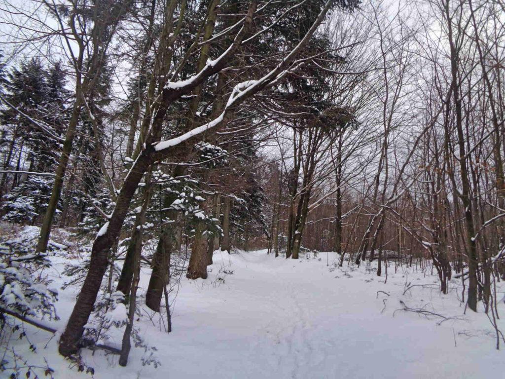 Uklejna, wejście zimą