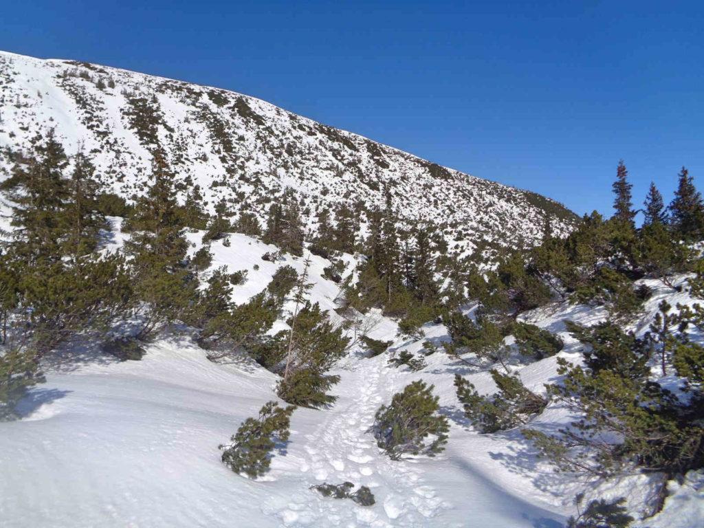 Dolina Gąsienicowa w zimie