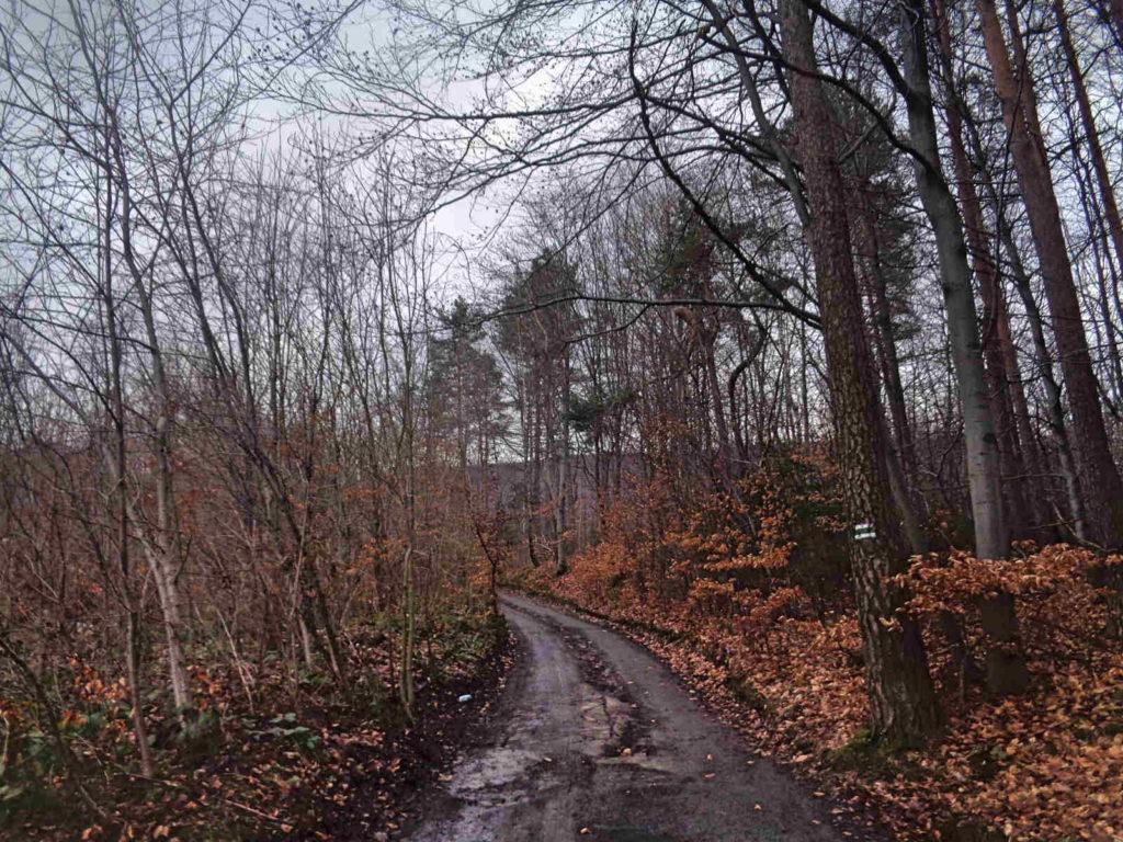 Szlak na Ciecień z Wiśniowej