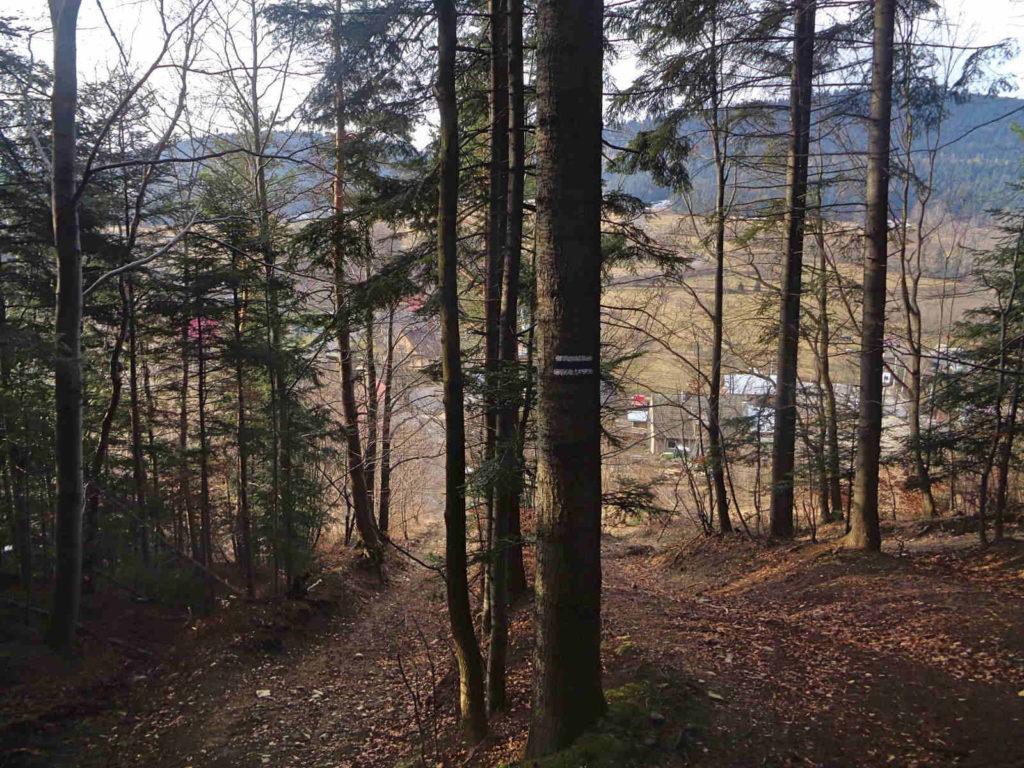 Zejście na Wierzbanowska Przełęcz