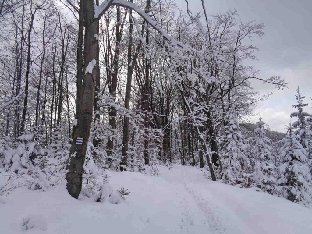 Wejście na Czupel w zimie