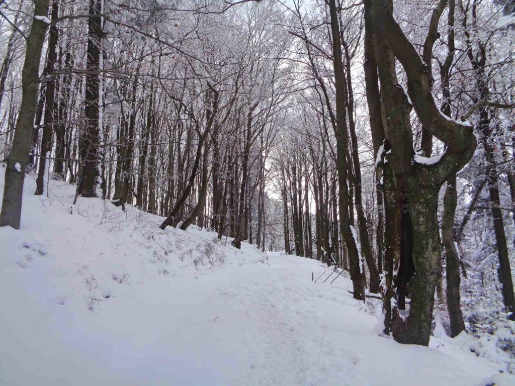 Wejście na Czupel zimą