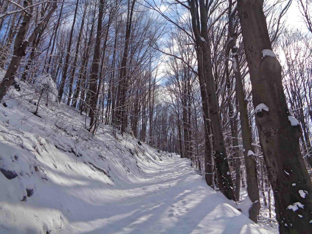 Góra Żar, wejście zimowe