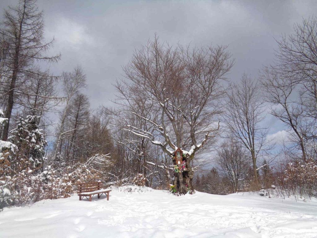 Kiczera, wejście zimowe