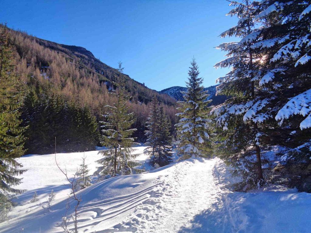 Dolina Jaworzynka w zimie