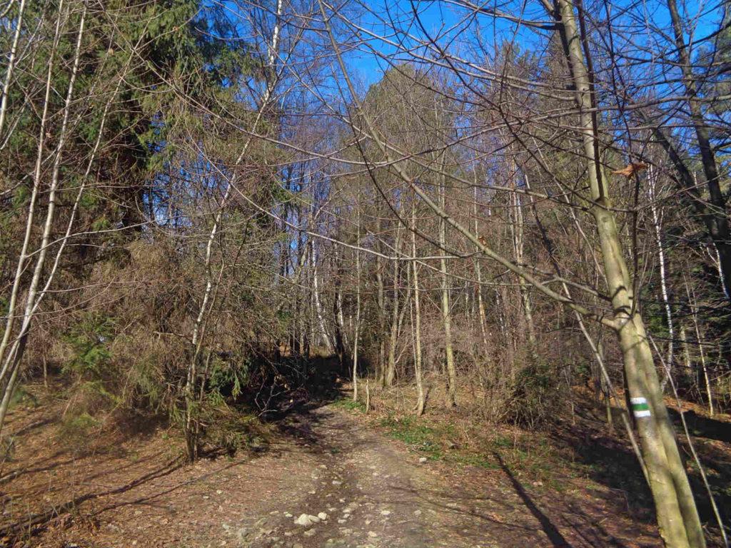 Lubomir, wejście zielonym szlakiem