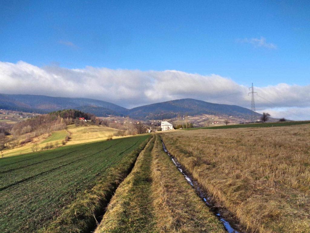 Szlak zielony, Wiśniowa